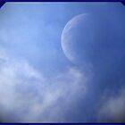 Day Moon2 by Christina Sauber