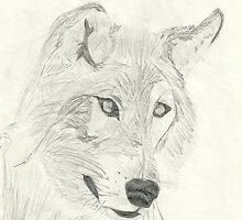 Canis Lupus Wolf Sketch by NatashaHartling