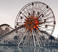 California Adventure by safariboy
