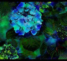 Beauty in Blue by maggiebarra