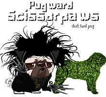 pugward scissorpaws by darklordpug