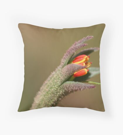 Claw Throw Pillow