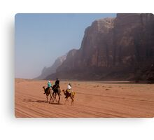 Camels of the desert Canvas Print