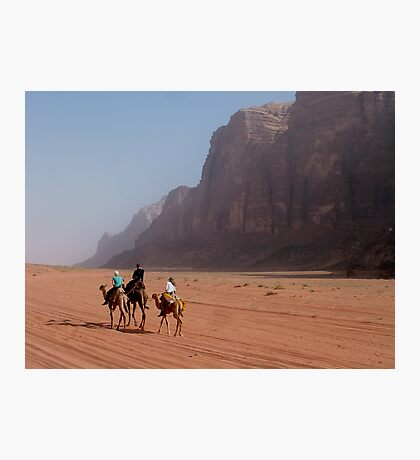 Camels of the desert Photographic Print