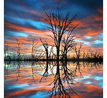 Tree Lake Sunset Photographic Print