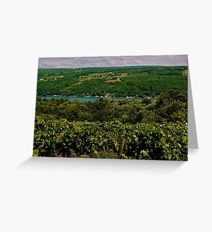 Keuka Lake Grape Vineyard Greeting Card