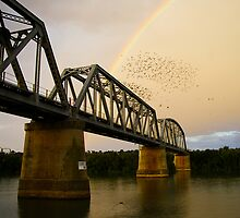 Birds, Bridges and a Pot of Gold by Michael Humphrys