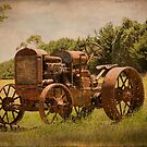 Rusty Relic at Lancefield Victoria Australia by Pauline Tims