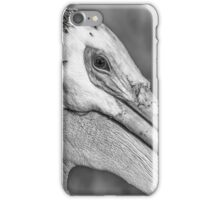 Close Up Of An American White Pelican iPhone Case/Skin