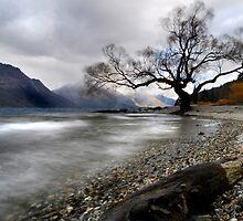 misty lake by Ian Robertson