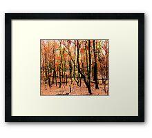 'Regeneration' Framed Print