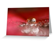 Golden Embers  Greeting Card