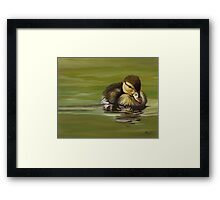 Duckling I 2007 Duck Series Framed Print