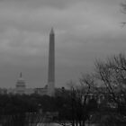 Washington on a cloudy day by Nicki Kenyon