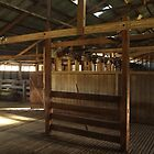 Oakhampton Wool Shed.  Near Tamworth, NSW by Mandy Gwan