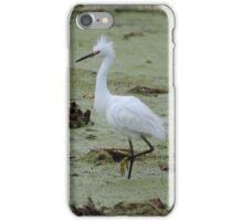 Snowy Egret Prancing iPhone Case/Skin