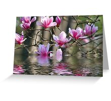Japanese Magnolia in Water Greeting Card