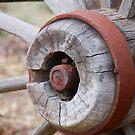 Wagon Wheel 1 by gcdepiazzi