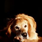 GOLDEN GIRL by Cindy Lever