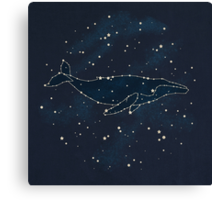 Whale Constellation  Canvas Print