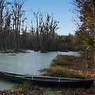 canoe by paula whatley