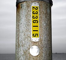Just another Light Pole by Marnie Hibbert