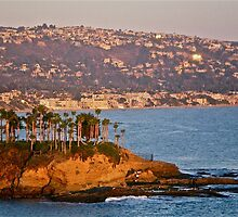 Laguna Beach by Thinkbox2438