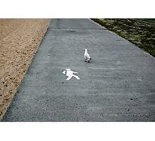 """""""Well it did say to walk"""" Photographic Print"""