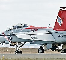 FA-18 Super Hornet by Nathan T