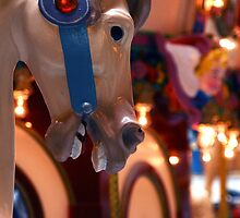 carosel noise by robyn delorme