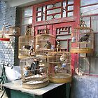 Birdcages in a Beijing Hutong by KLiu