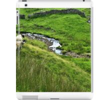 Locals - in the Yorkshire Dales iPad Case/Skin