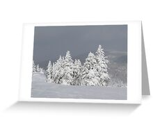 Beautiful mountaintop snowscape Greeting Card