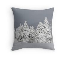 Beautiful mountaintop snowscape Throw Pillow