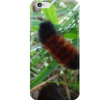 Wooly Worm iPhone Case/Skin