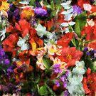 Abundantly Colorful by kalliope94041