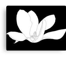 Magnolia 200 BW Drawing Canvas Print