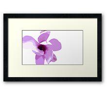 Magnolia 3253 Colour Framed Print