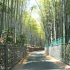 Kyoto's Bamboo Road - View 2 - Japan by Craftymizz