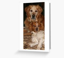can we? can we? Greeting Card
