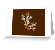 Fall.... Greeting Card