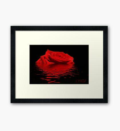 Drowning Rose Framed Print