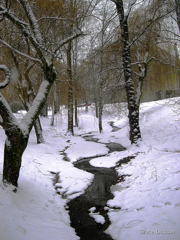 creek by Bruce  Dickson