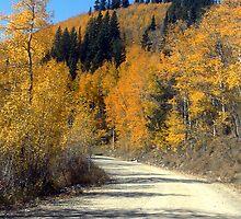 Boreas Pass Road by Tony L. Callahan