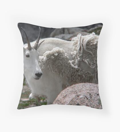 Be Sure To Get My Good Side Throw Pillow