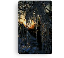 Winter in Gotham City  Canvas Print