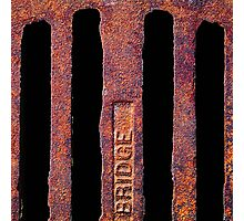 Just Grate! Photographic Print
