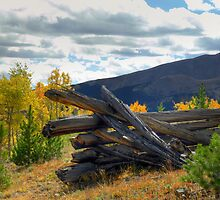 Boreas Pass Corral by Tony L. Callahan
