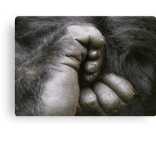 Gorilla Feet Canvas Print