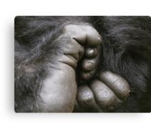 Gorilla Feet Canvas Print